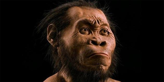Homo Naledi'ler hakkında neler biliyoruz?