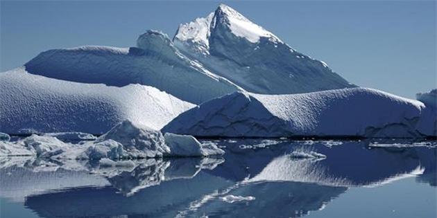 Buzulların Erimesi Sonucu Açığa Çıkan Virüs, Denizdeki Memelilerin Hayatını Tehlikeye Atıyor