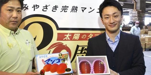 Japonya'da yılın ilk mangoları açık artırmayla satıldı