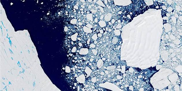 Isıya dayanıklı yaşam formu bulmak için Antarktika'yı araştırıyor