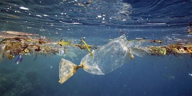 Plastik tehlikesi tüm dünyayı sardı!