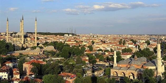 Edirne'ye kedi köyü yapılacak