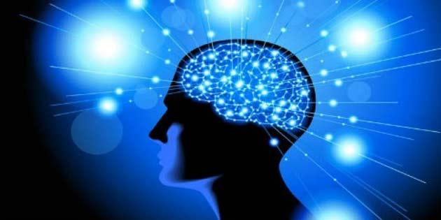 İnsan Hafızasına Dair Çok Önemli Bir Sır Daha Çözülmek Üzere
