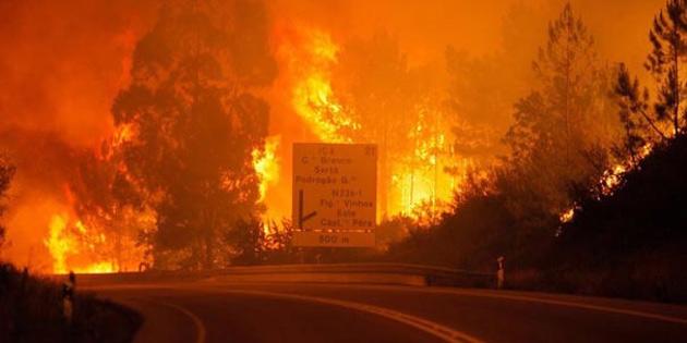 Yangına neden oldukları şüphesiyle 91 kişi gözaltına alındı