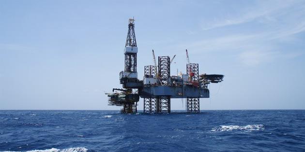 Enerjide petrol ve doğalgazın ağırlığı sürecek