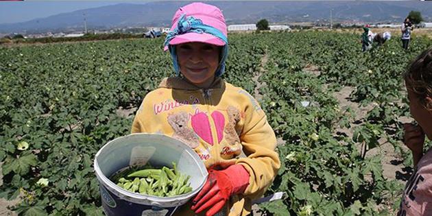 2018 çocuk işçiliği ile mücadele yılı ilan edildi