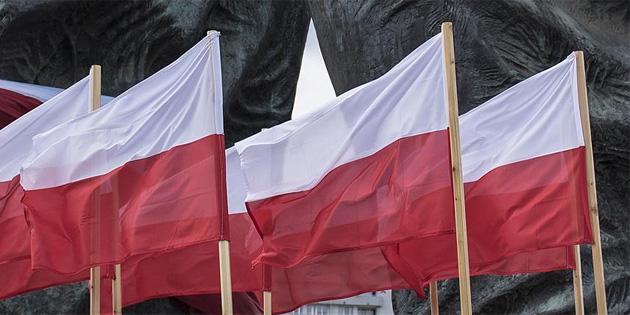 Polonya gönüllü üniversite öğrencilerine askeri eğitim verecek
