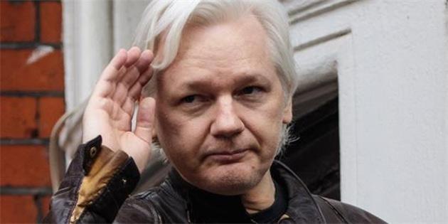 Assange'ı kedisi ile tehdit ettiler