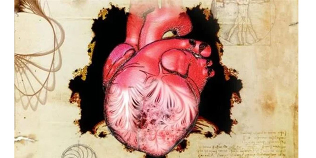 Da Vinci'nin çizdiği kalpteki sırrı bilim 500 yıl sonra çözdü!