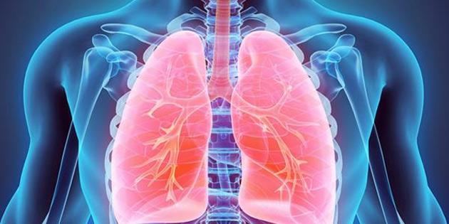 Akciğer, Sadece Soluk Almakta Görevli Değil!
