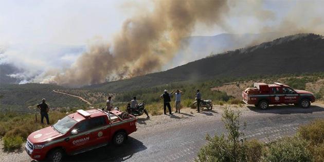 İzmir'in Urla ve Bayındır ilçelerinde orman yangını