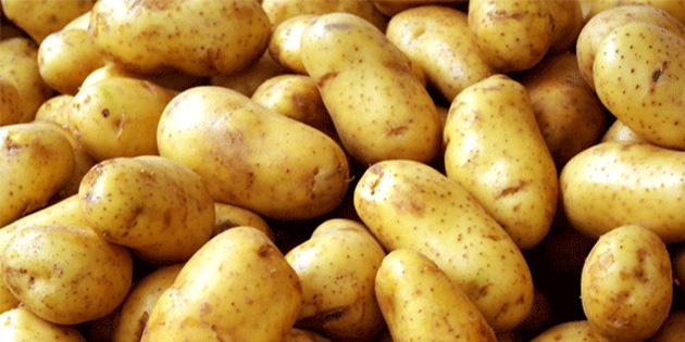 TÜK, sofralık patates satışına başlıyor