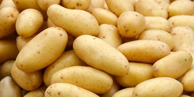 Toprak ürünleri kurumu patates alımlarına başlıyor