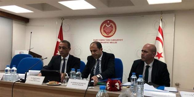 Başbakan Yardımcılığı ve Dışişleri Bakanlığı bütçesi komitede onaylandı