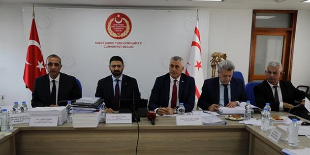 Komitede Maliye Bakanlığı bütçesi görüşülüyor