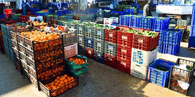 İthal siyah üzüm, taze fasülye ile yerli üzüm, biber ve domates'te limit üstü kalıntıya rastlandı