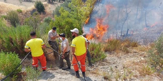 Orman Dairesi ekibi Alanya'daki yangına müdahale ediyor