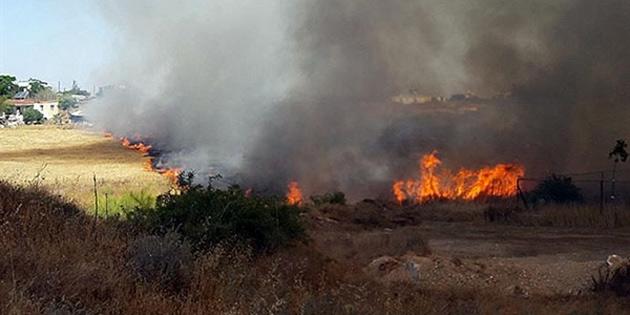 Alevkaya - Beyköy arasındaki yangında 30 dönümlük çam ağacı, maki ve kuru otlar yandı