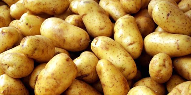 Patates üretcilerine çağrı
