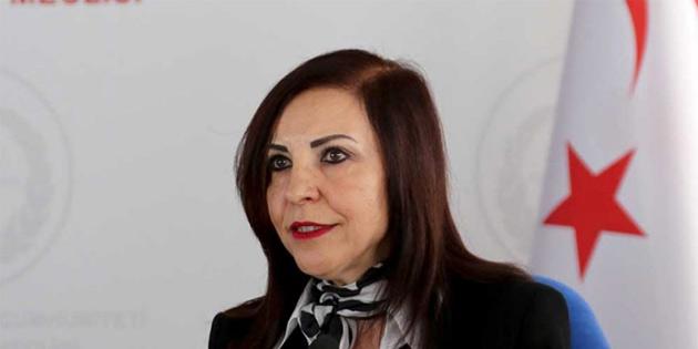 """""""Terk edilmiş mal statüsünde değerlendirilerek evine başkası yerleştirilen Kıbrıslı Rum mağdur edildi"""""""