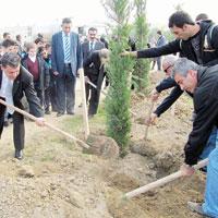 Cumhuriyet Parkı'na 250 yeni fidan
