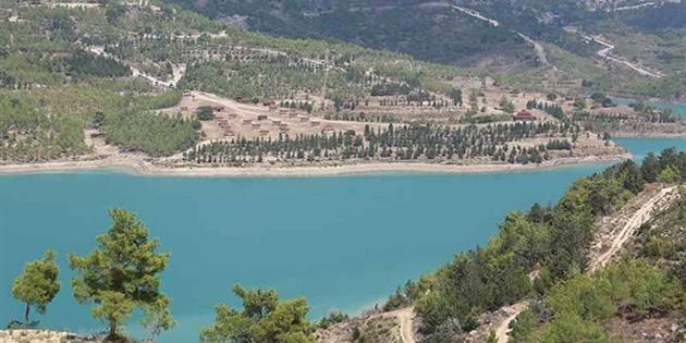 Geçitköy Baraj bölgesine fidanlar dikiliyor