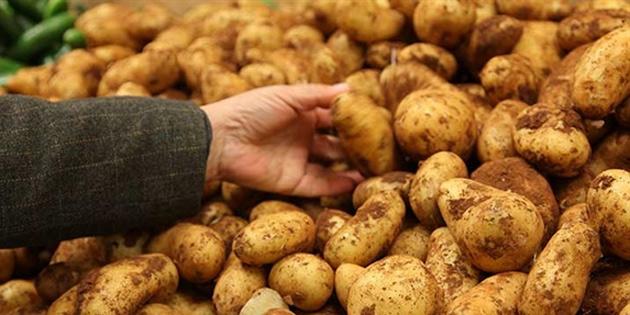 TÜK sofralık patatesin satış fiyatını 3.75 TL/kilo'ya düşürdü