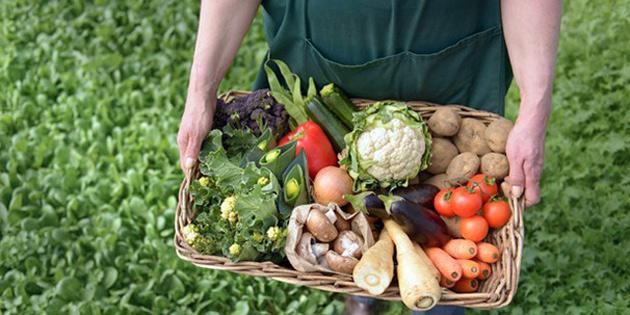 Altı bahçeden alınan numunelerde limit üstü pestisite rastlandı