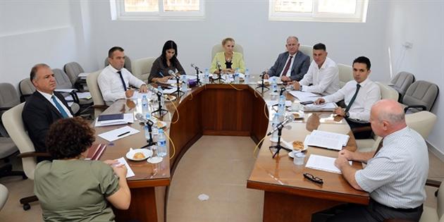 Cumhuriyet Meclisi Dilekçe ve Ombudsman Komitesi toplandı