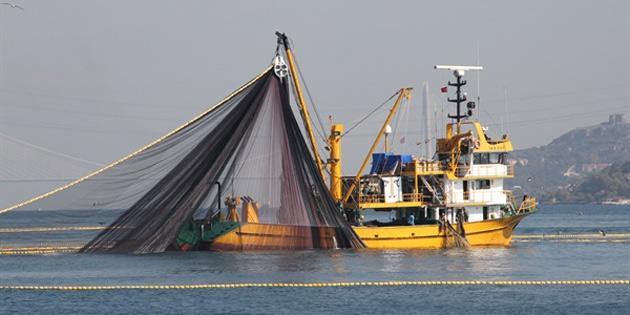 Ziraat mühendisleri, izinsiz gırgır gemilerine müdahale edilmesini istedi