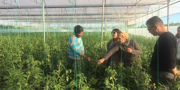 Tarım dairesi eğitim çalışmalarına Aydınköy ile devam etti