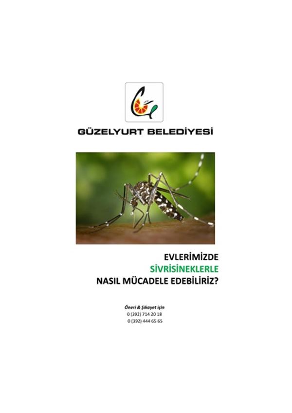 Güzelyurt Belediyesi sivrisinek ve hamamböceklerine karşı ilaçlama başlattı