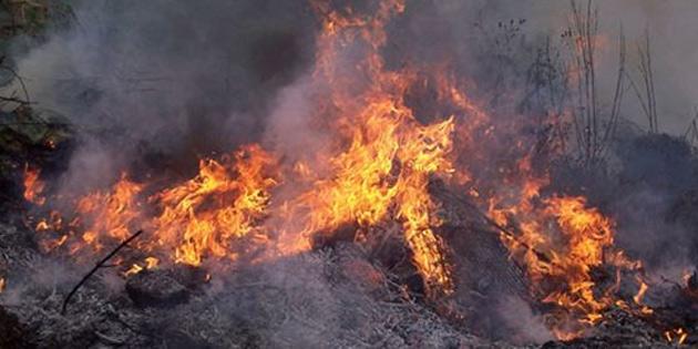 Değirmenlik-Alevkayası yolunun Güney kısmında yangın