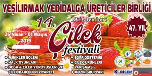 14. Çilek Festivali yarın 18.00'deki kortej yürüyüşüyle başlayacak