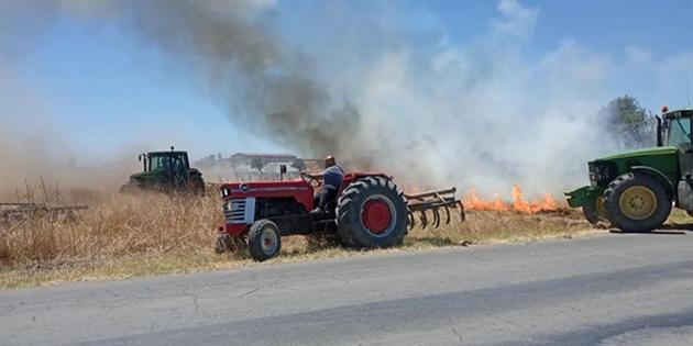 Paşaköy'de mandıralar bölgesinde yangın çıktı