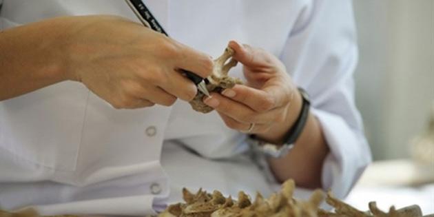 KŞK kazı ve laboratuvar çalışmalarına ara verdi