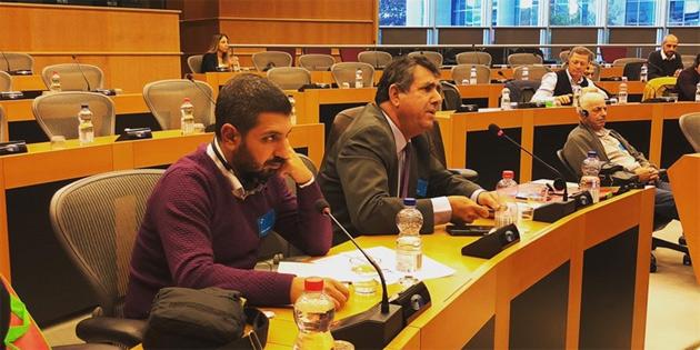 Avrupa Parlamentosu'nda ırkçılık ve yabancı düşmanlığı paneli düzenlendi