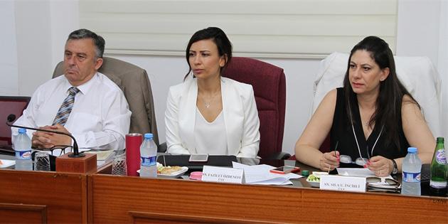 İdari, kamu ve sağlık işleri komitesi toplandı