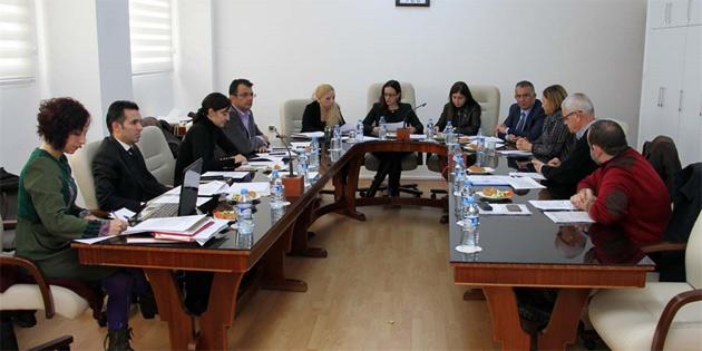 Meclis Siyasi İşler ve Dışilişkiler Komitesi iki tasarıyı görüştü