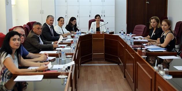 Üst Kademe Yöneticiliği Yapan Kamu Görevlilerinin Atanması Hakkında Yasa Tasarısı meclis komitesinde onaylandı