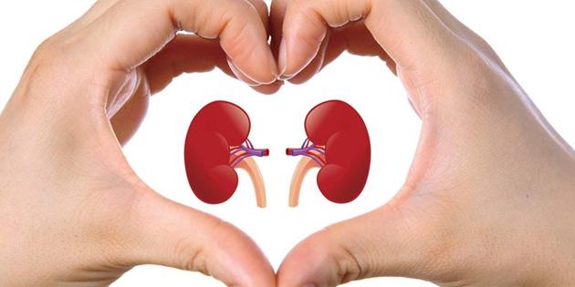 150 diyaliz hastası organ nakli bekliyor