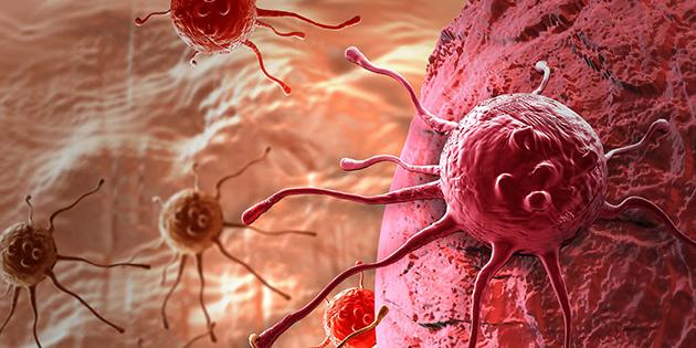 Kanserle mücadelede immünolojik yöntemler ön planda